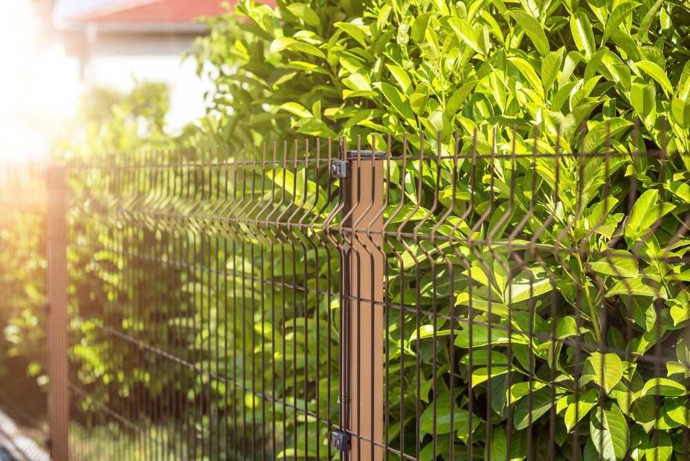 Panele ogrodzeniowe 3D i roślinność.